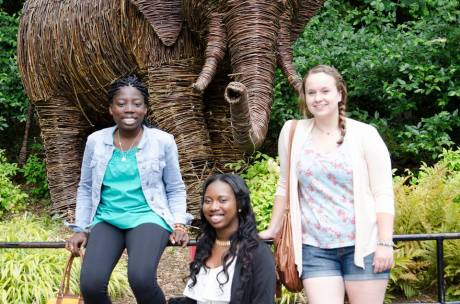 Trio of friends at the National Zoo